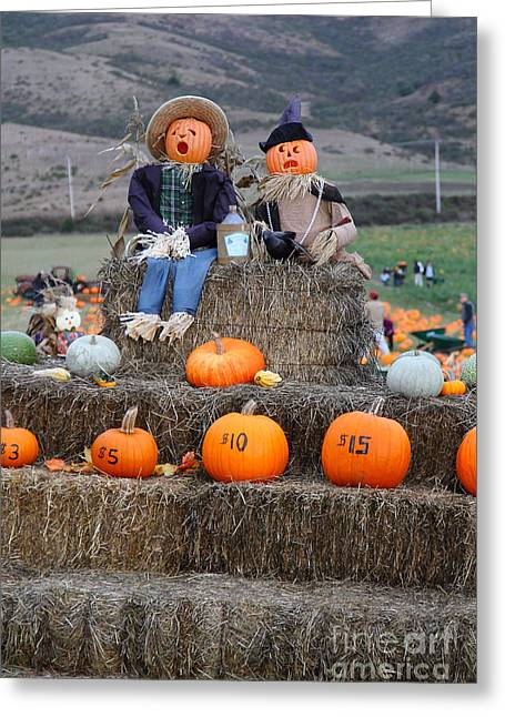 Melon Greeting Cards - Halloween Pumpkin Patch 7D8476 Greeting Card by Wingsdomain Art and Photography