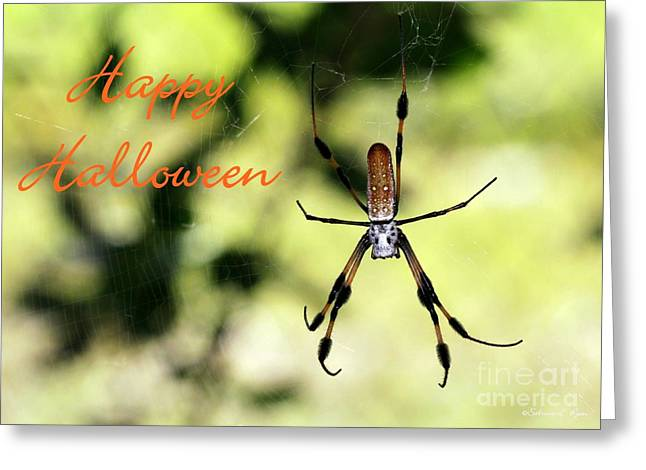 Creepy Crawly Greeting Cards - Halloween Spider Card Greeting Card by Sabrina L Ryan