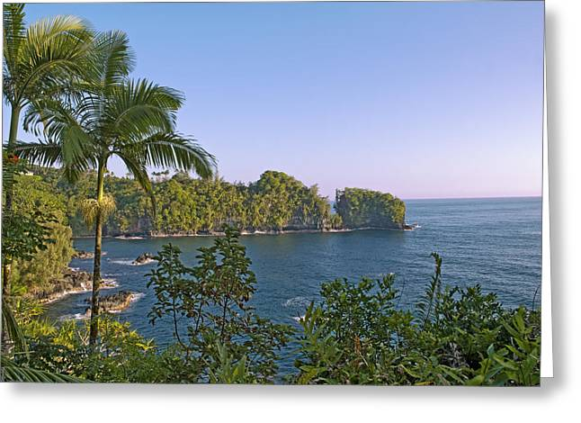 Lush Green Greeting Cards - Hamakua Coast on the Big Island Hawaii Greeting Card by Brendan Reals