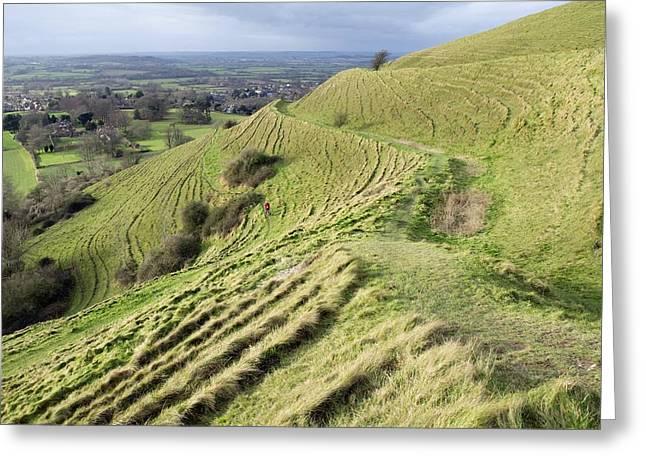 Hambledon Hill Iron Age Hill Fort Greeting Card by Adrian Bicker