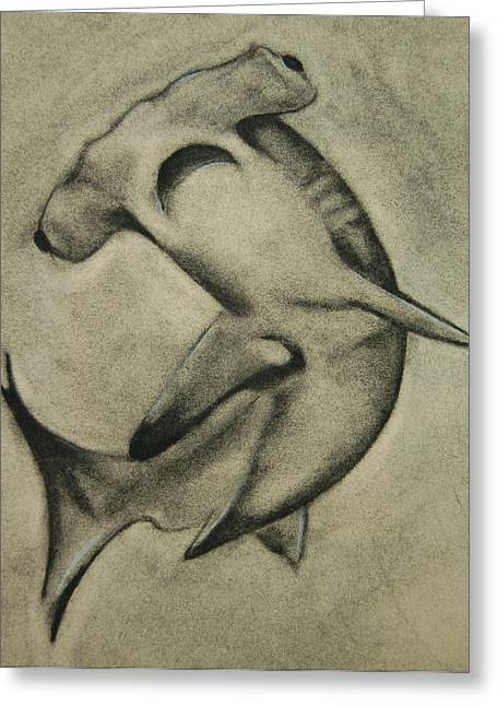 White Shark Pastels Greeting Cards - Hammer Head Greeting Card by Tyler Hendrick