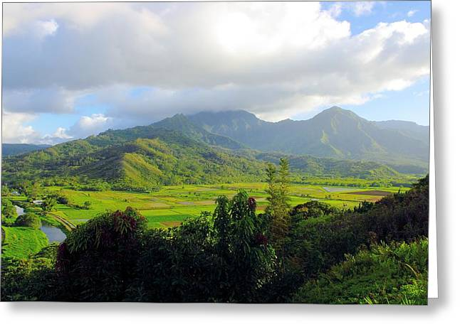 Hanalei Valley View Greeting Card by John  Greaves