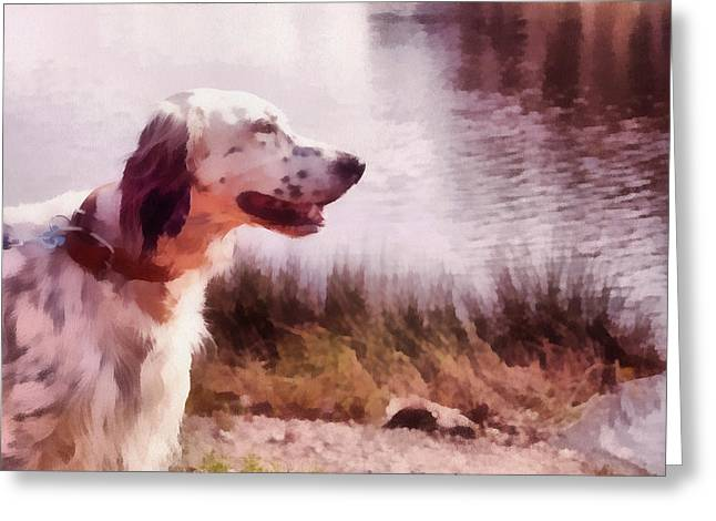 Handsome Hunter. English Setter Greeting Card by Jenny Rainbow