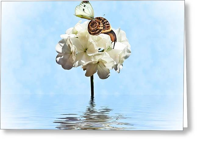 Flood Digital Art Greeting Cards - Hang On Greeting Card by Sharon Lisa Clarke