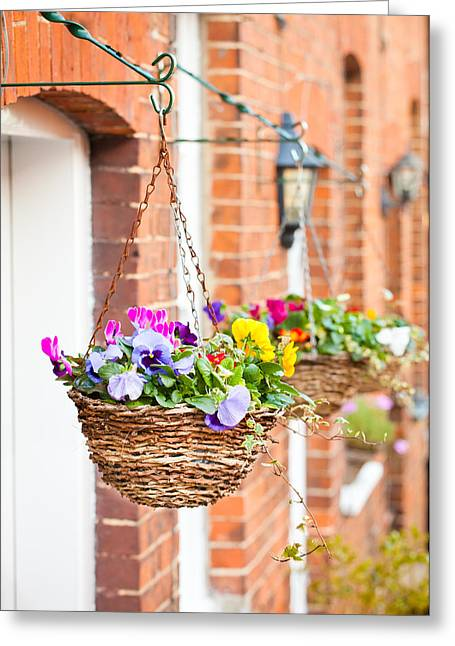 Basket Photographs Greeting Cards - Hanging baskets Greeting Card by Tom Gowanlock