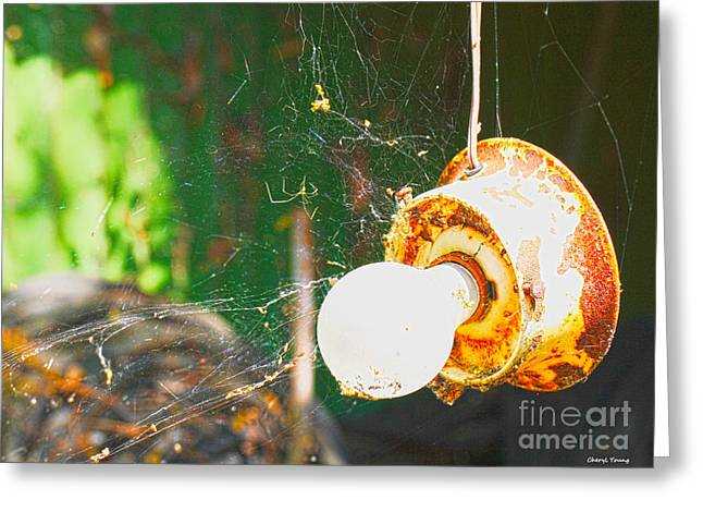 Old Light Bulb Greeting Cards - Hanging by a Web Greeting Card by Cheryl Young