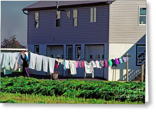 Hanging Laundry Greeting Cards - Hanging Laundry Greeting Card by Thomas R Fletcher