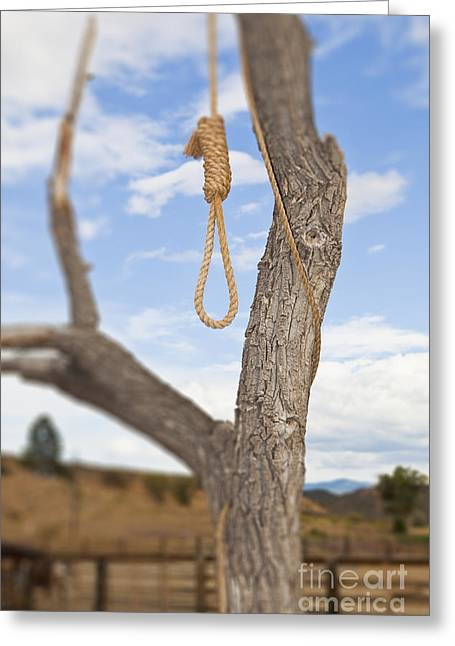 Noose Greeting Cards - Hangman Noose in a Tree Greeting Card by Bryan Mullennix