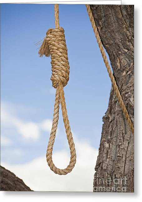 Noose Greeting Cards - Hangmans Noose in a Tree Greeting Card by Bryan Mullennix
