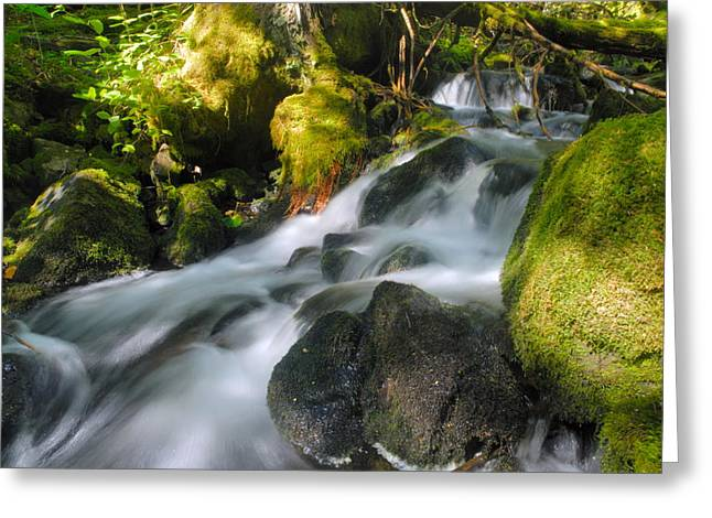 Canoe Waterfall Greeting Cards - Hanson Falls Greeting Card by Larry Ricker