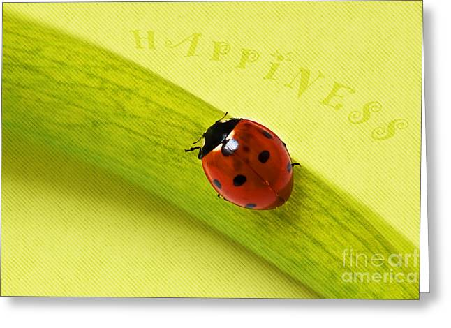 Makro Greeting Cards - Happiness Greeting Card by Angela Doelling AD DESIGN Photo and PhotoArt