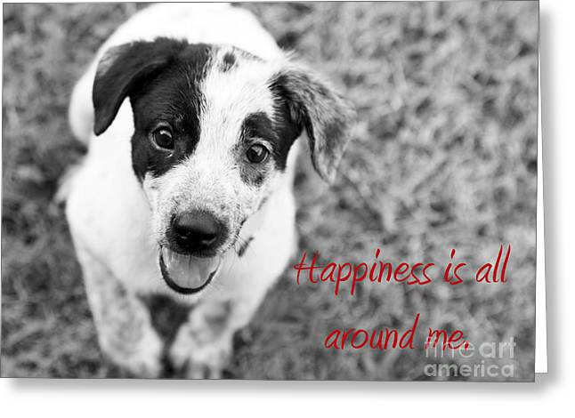 Motivational Poster Greeting Cards - Happiness is all around me Greeting Card by Amanda Barcon