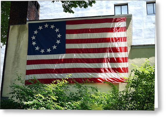 Betsy Bell Greeting Cards - Happy 4th of July Greeting Card by Daniela Kriva