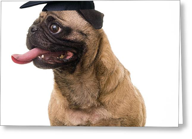 Happy Graduation Greeting Card by Edward Fielding