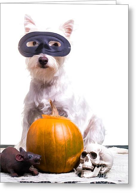 Happy Dogs Cute Dogs Greeting Cards - Happy Halloween Dog Greeting Card by Edward Fielding