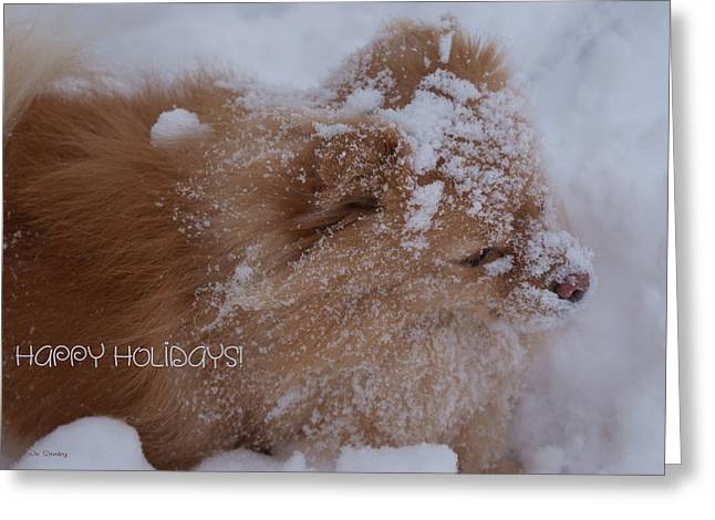 Happy Holidays Christmas Card Greeting Card by Joanne Smoley