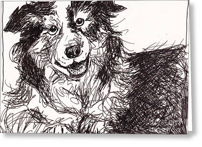Happy The Boarder Collie Greeting Card by Michele Hollister - for Nancy Asbell