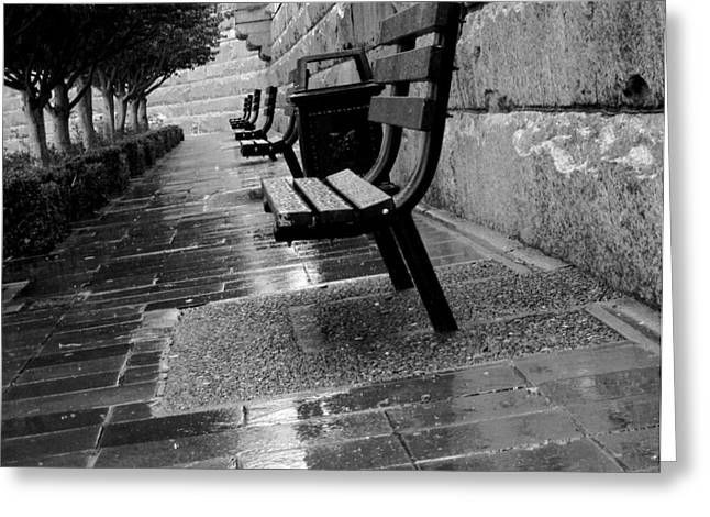 Park Benches Greeting Cards - Harbor Bench Greeting Card by Calvin Wray