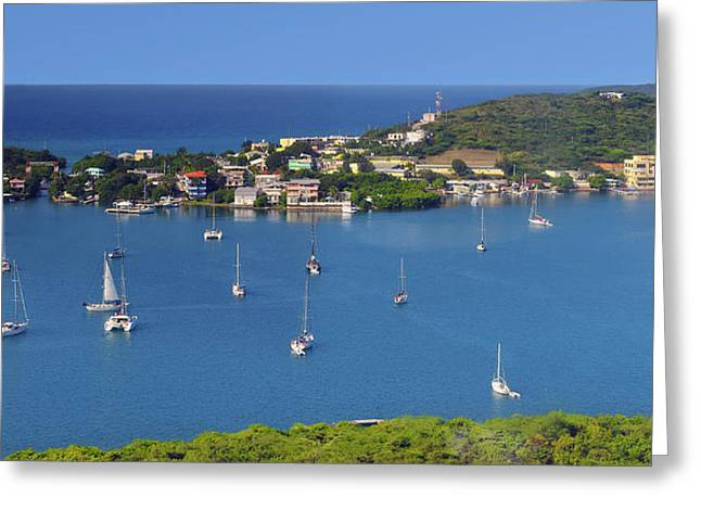 Tropical Island Greeting Cards - Harbor Blues Greeting Card by Stephen Anderson