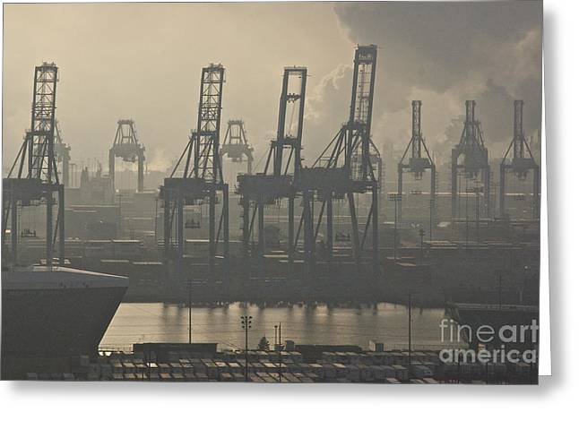 Commencement Bay Greeting Cards - Harbor Cranes Greeting Card by Sean Griffin