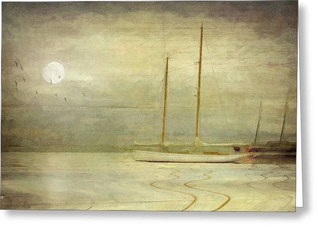 Sailing Ship Mixed Media Greeting Cards - Harbor Moonlight Greeting Card by Michael Petrizzo