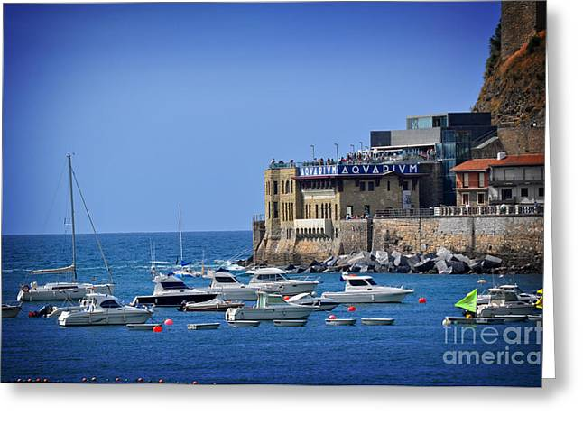 Harbor - North Coast Of Spain Greeting Card by Mary Machare