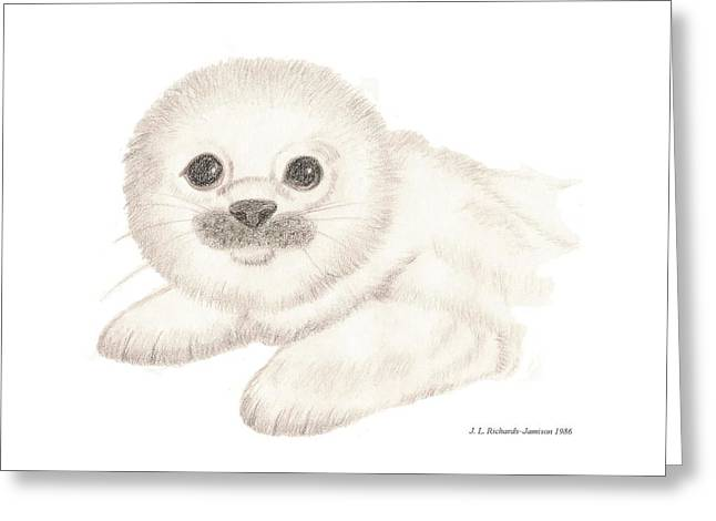 Seal Drawings Greeting Cards - Harbor Seal Greeting Card by Jennie  Richards