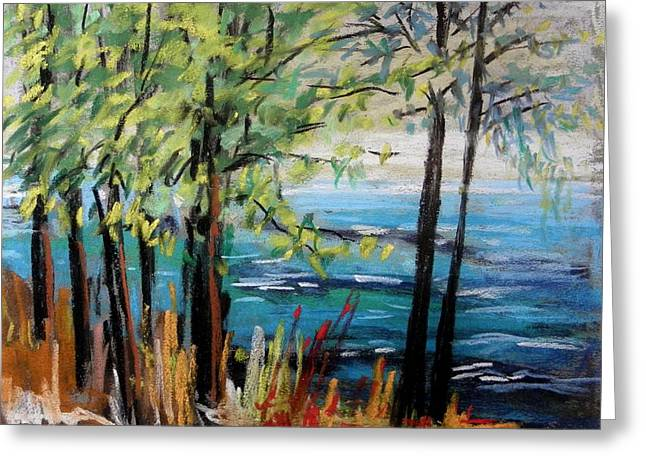 Unique View Pastels Greeting Cards - Harbor Trees Greeting Card by John  Williams