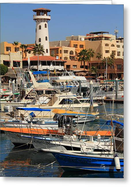 Harbor Waterfront In Cabo San Lucas Greeting Card by Roupen  Baker