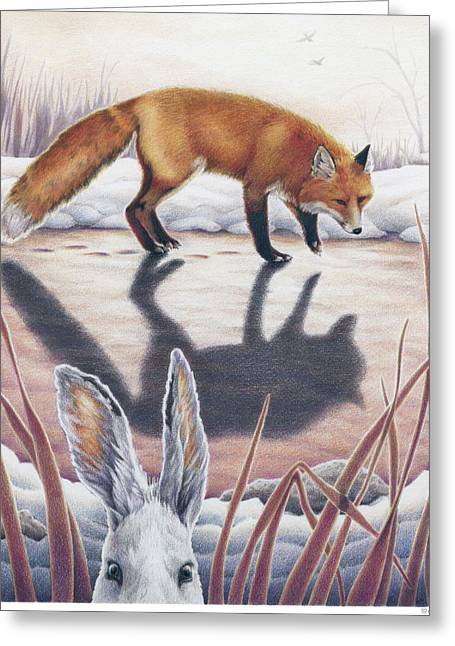Prey Drawings Greeting Cards - Hare Stands On End Greeting Card by Amy S Turner