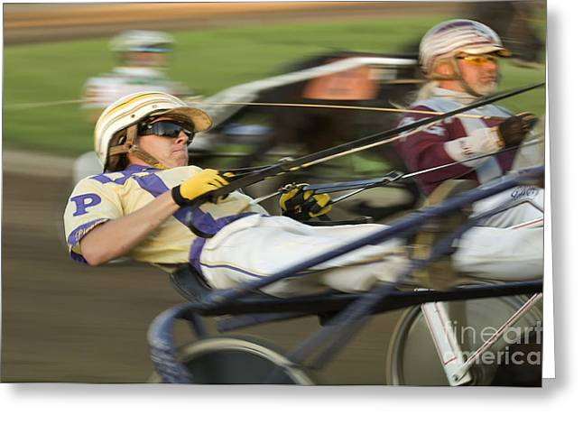 Race Horse Greeting Cards - Harness Racing 1 Greeting Card by Bob Christopher