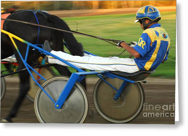 Race Horse Greeting Cards - Harness Racing 12 Greeting Card by Bob Christopher