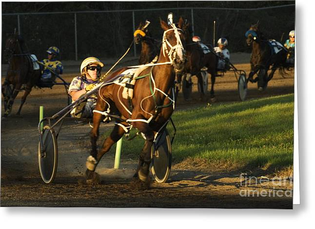 Race Horse Greeting Cards - Harness Racing 4 Greeting Card by Bob Christopher