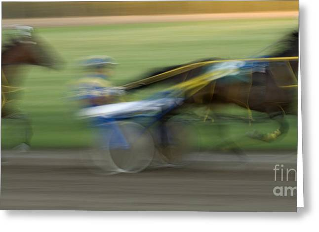 Race Horse Greeting Cards - Harness Racing 5 Greeting Card by Bob Christopher