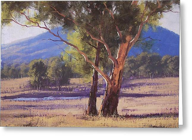 Australian Tree Greeting Cards - Hartley Vale Gum Greeting Card by Graham Gercken