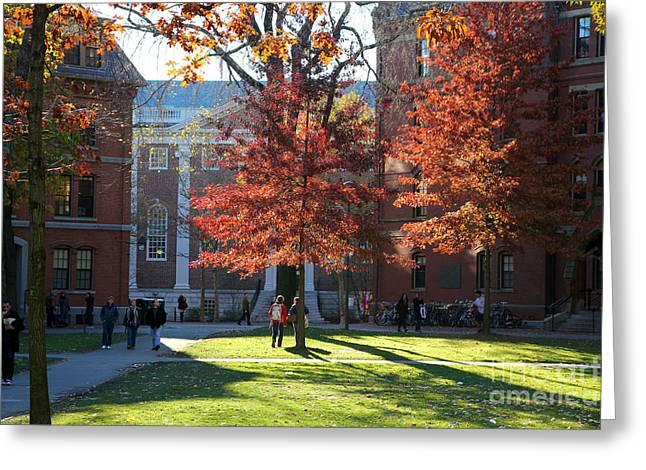 Red School House Greeting Cards - Harvard Yard Lehman Hall in Fall Greeting Card by Jannis Werner