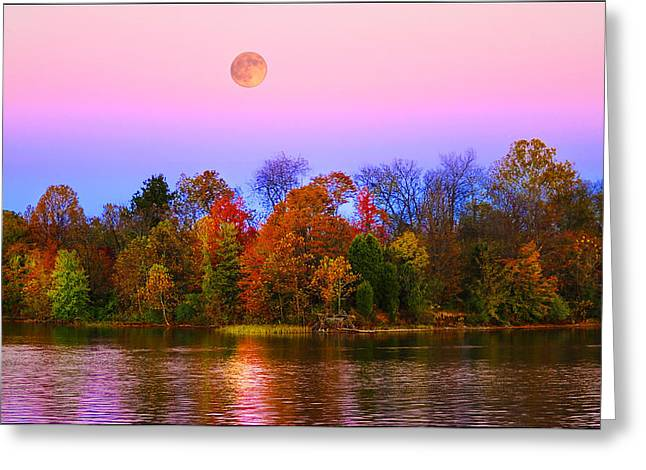 Reflection Harvest Greeting Cards - Harvest Moon from the Deck at RFLMarina Greeting Card by Randall Branham