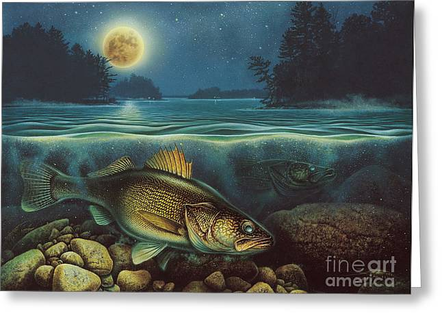 3 Fish Greeting Cards - Harvest Moon Walleye III Greeting Card by JQ Licensing