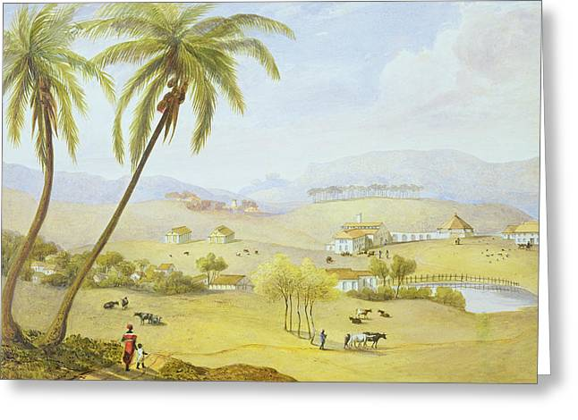 1843 Greeting Cards - Haughton Court - Hanover Jamaica Greeting Card by James Hakewill