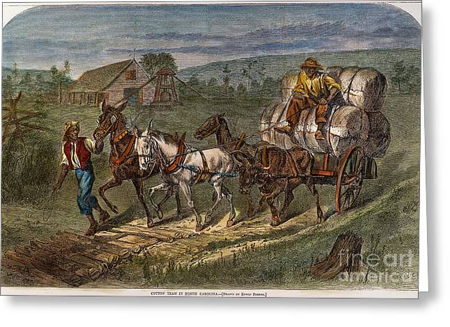 Sharecropper Greeting Cards - Hauling Cotton, 1866 Greeting Card by Granger