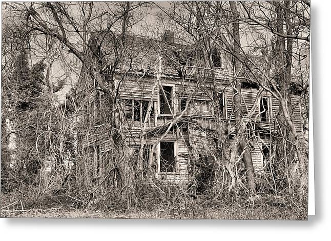 Overgrown Greeting Cards - Haunting in DelMarVa Greeting Card by JC Findley