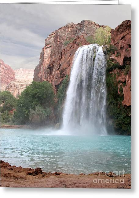 Chris Hill Greeting Cards - Havasu Waterfall Greeting Card by Chris Hill