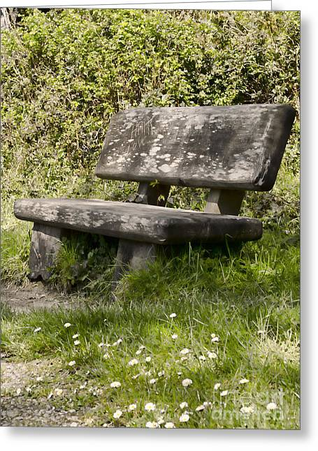 Stone Bench Greeting Cards - Have a Seat Greeting Card by Heather Applegate