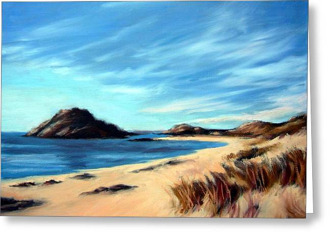 Janet King Greeting Cards - Havik Beach Greeting Card by Janet King