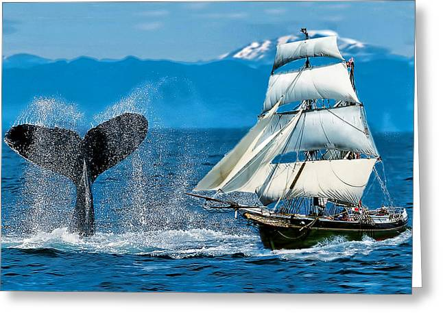 Having A Whale Of A Time Greeting Card by Alex Hardie