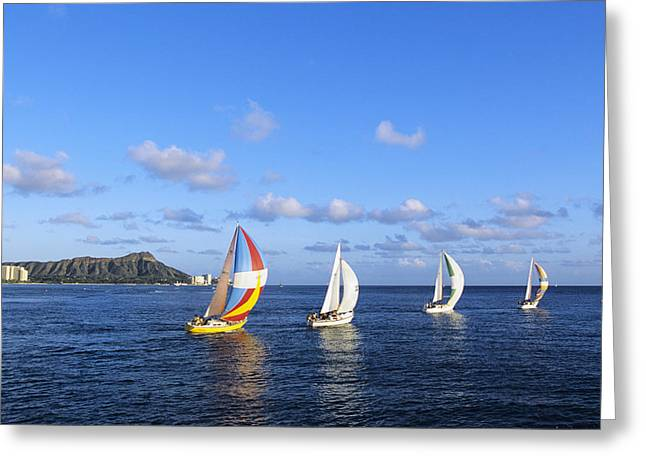 Flat Four Greeting Cards - Hawaii Sailboats Greeting Card by Joss