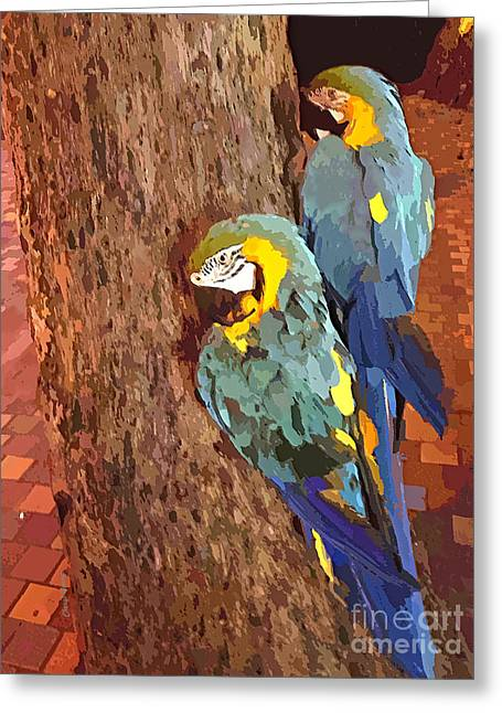 Smart Greeting Cards - Hawaiian Parrots Greeting Card by Cheryl Young