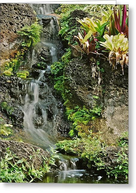 Peychich Greeting Cards - Hawaiian Waterfall Greeting Card by Michael Peychich