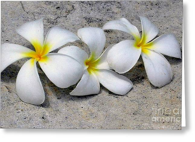Hawaiin Greeting Cards - Hawaiin Flowers Greeting Card by Jesse Alonzo