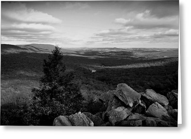 Hawk Mountain Sanctuary BW Greeting Card by David Dehner